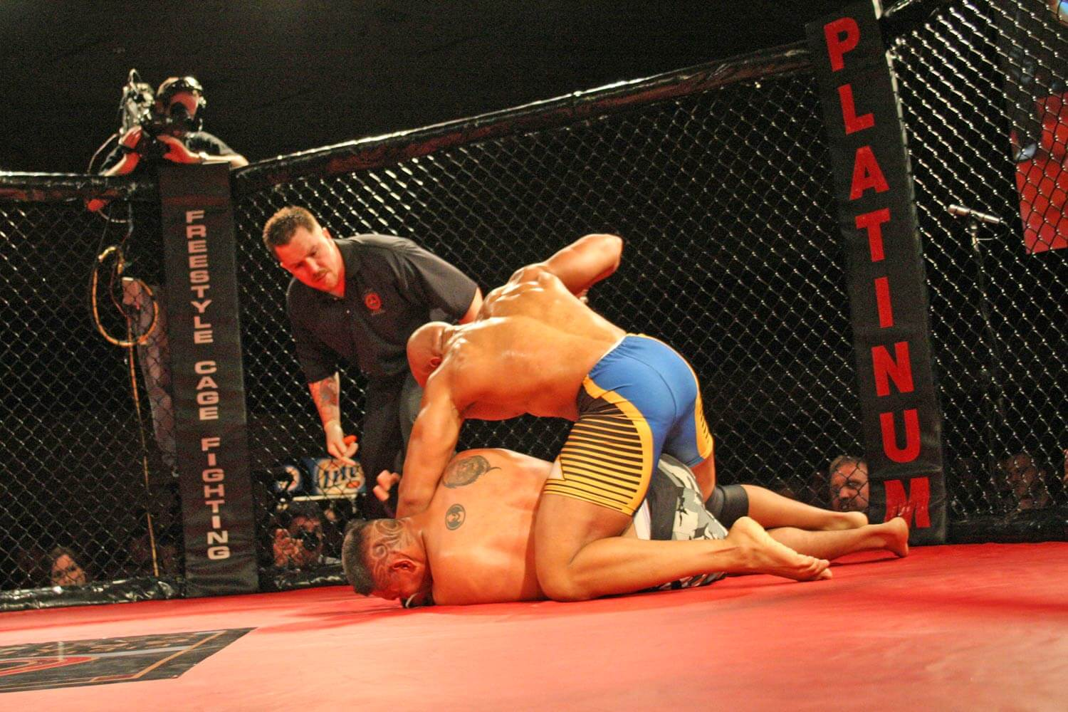 Freestyle Cage Fighting 27 Knockout Blow Image