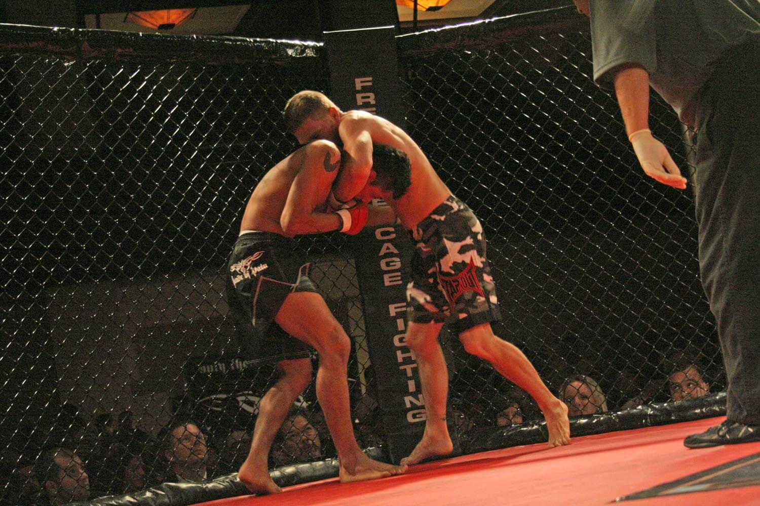 Freestyle Cage Fighting 27 Fighters Grappling Image