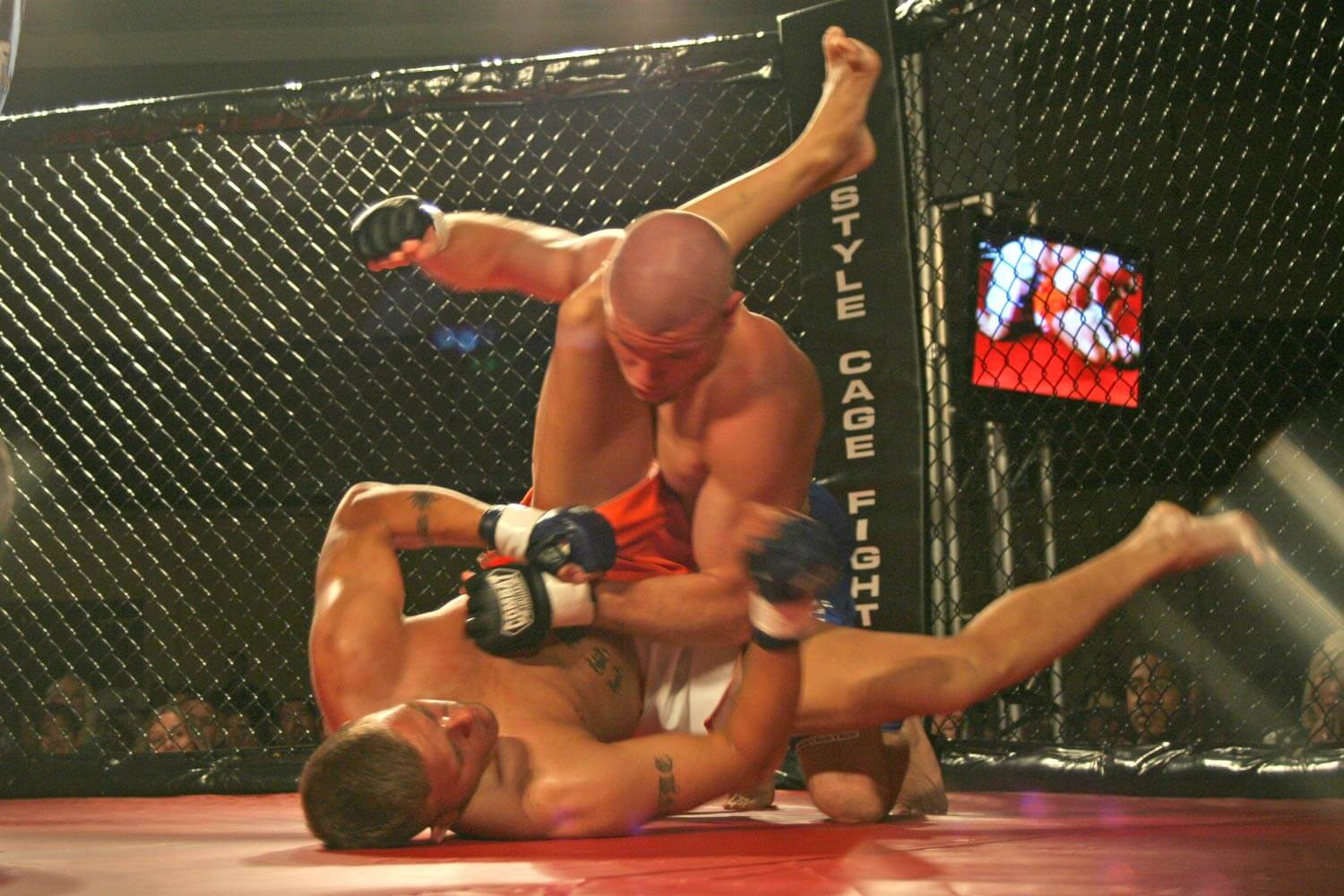 Freestyle Cage Fighting 27 Knockout Image