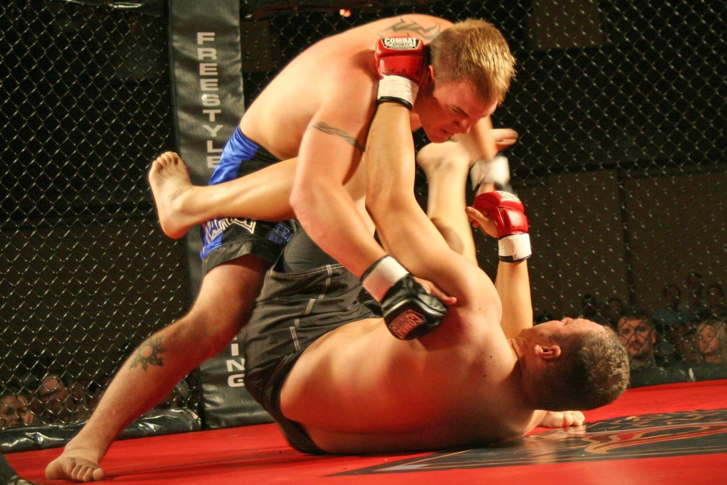 Freestyle Cage Fighting 27 Melee Image