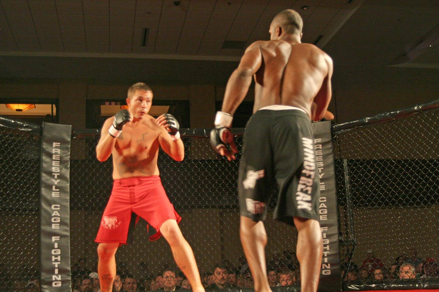 Freestyle Cage Fighting 27 Posturing Image