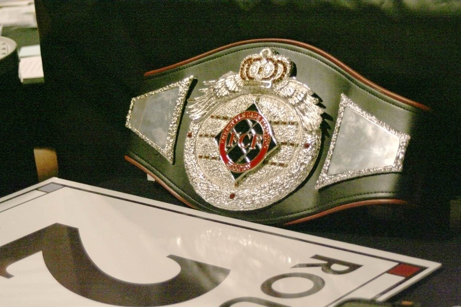 Freestyle Cage Fighting Championship Belt Closeup Image