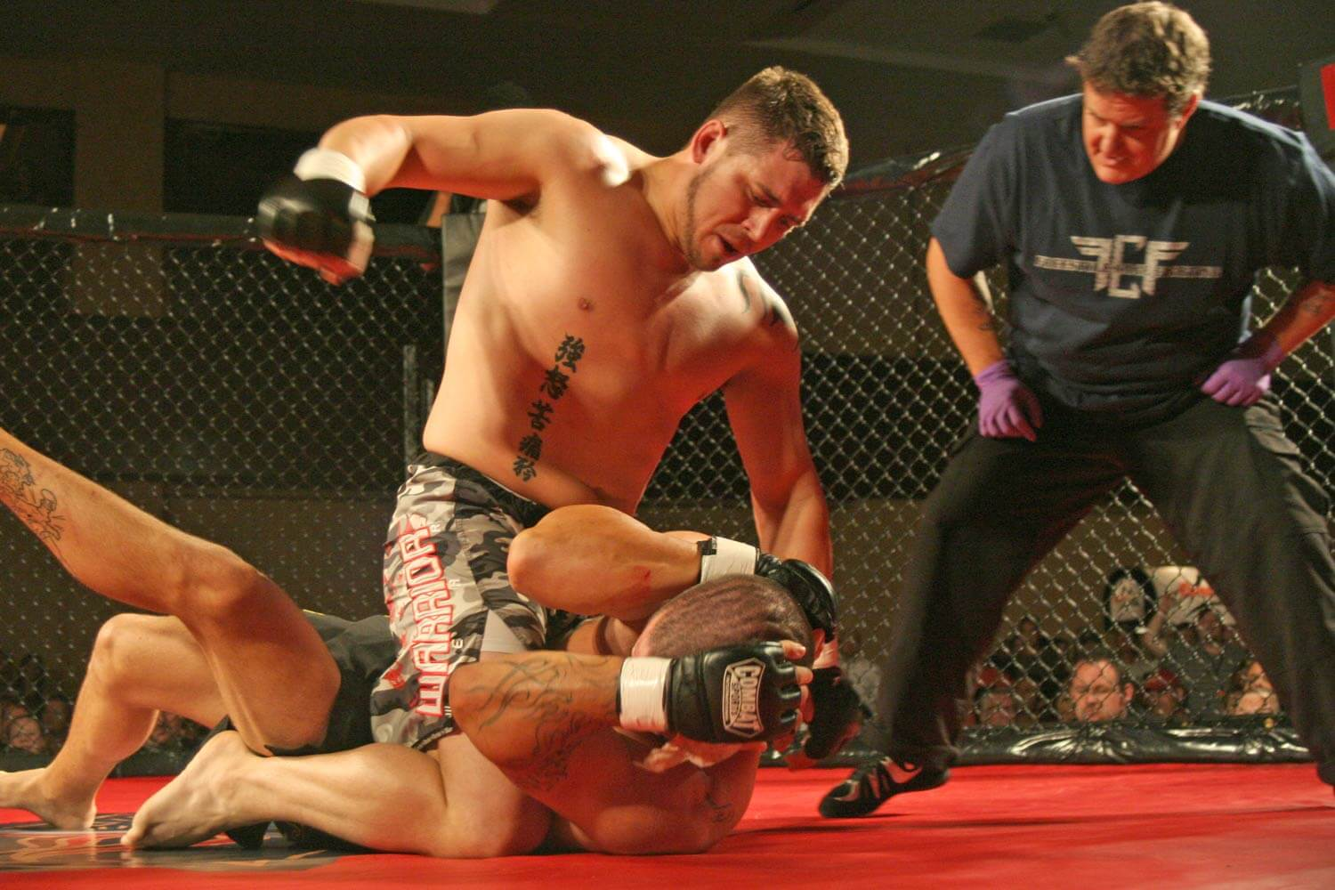 Freestyle Cage Fighting 27 Action Image