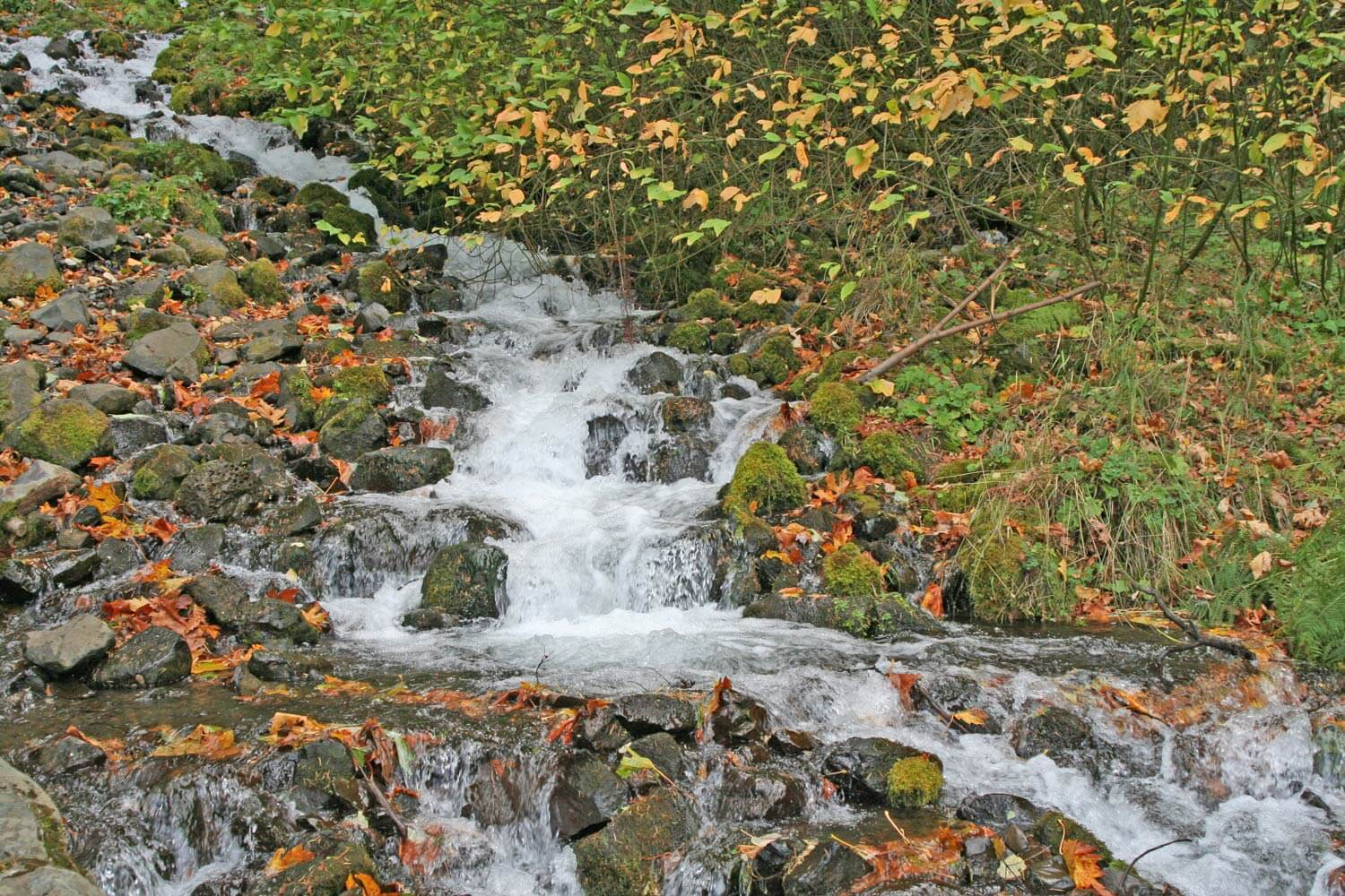 A stream cascading down from Multnomah Falls Image