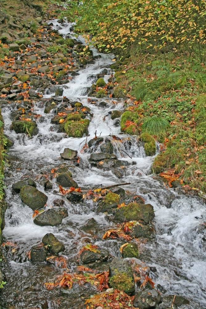 A stream flowing down from Multnomah Falls Image