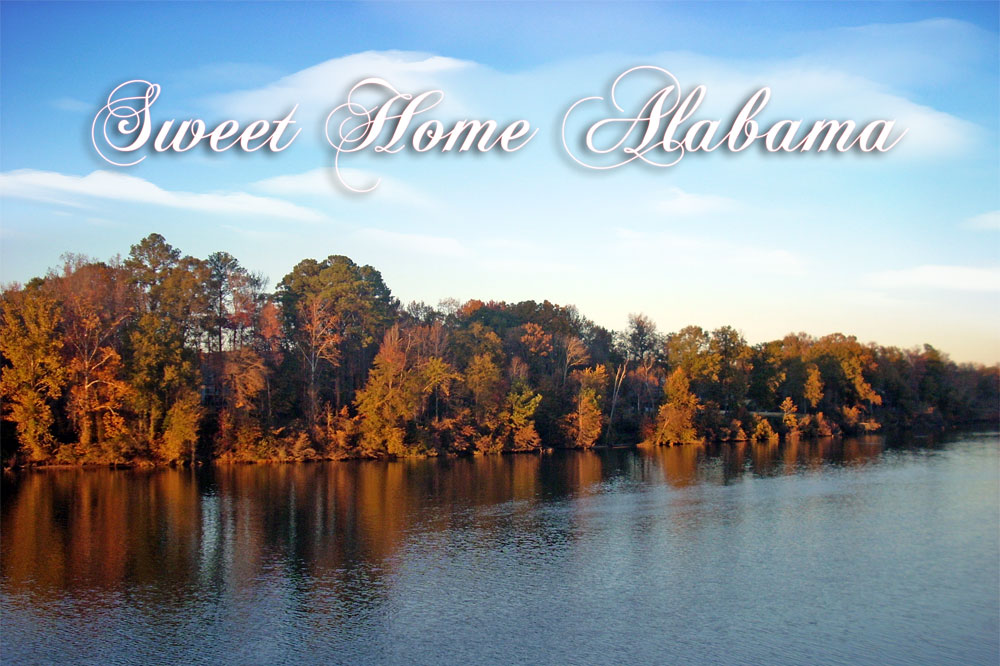 Sweet Home Alabama Poster Image