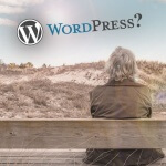 Wordpress and Drupal CMS